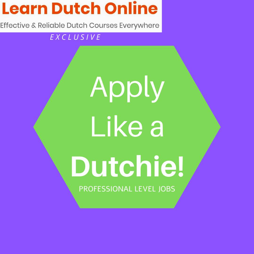 Apply like a Dutchie! – Professional level Jobs