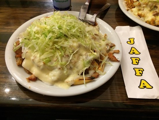 If you're studying in Holland, you have to try the number one streetfood here: the kapsalon! - LDO Blog - Learn Dutch Online & Offline!